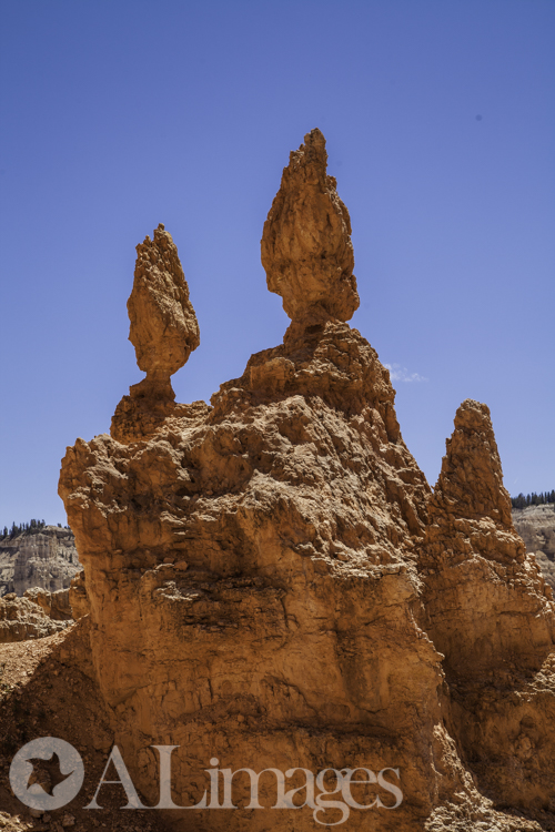 Queens Garden - Bryce Canyon National Park - ALimages 2016